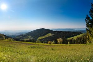Landscape view of Schwanberg. Meadow, forest, sunshine.